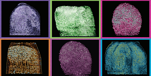 NIST Releases Data to Help Measure Accuracy of Biometric Identification
